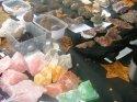 Prodej kamenů a kartářka v Roztokách